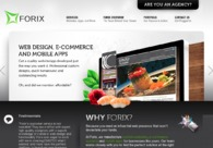 A great web design by Forix Seattle, Seattle, WA: