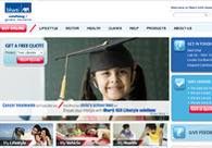 A great web design by Outsource Web Design Company, Indonesia, Indonesia: