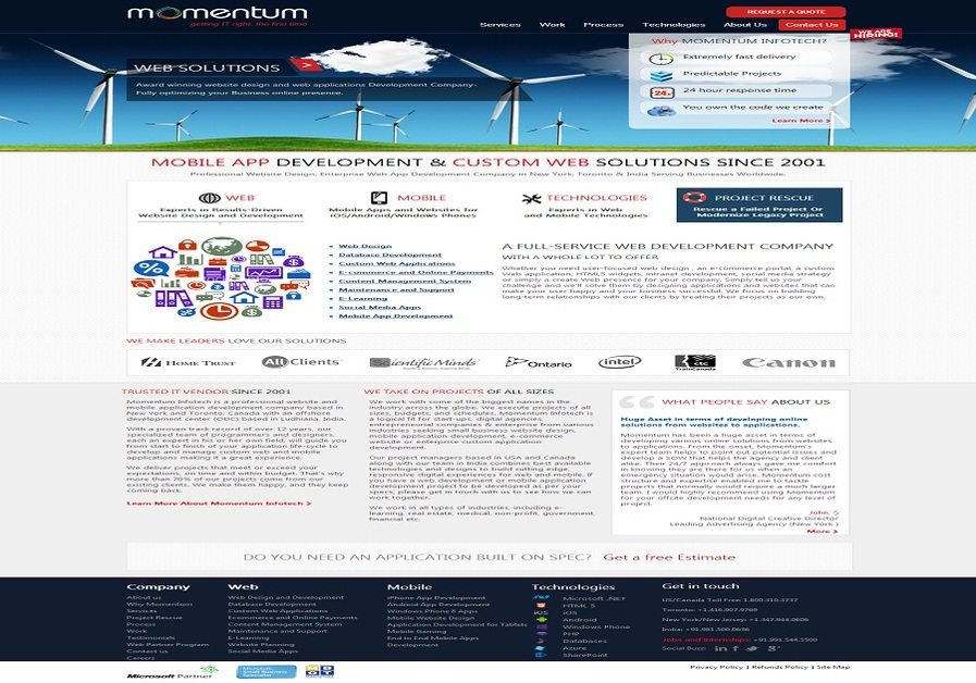 A great web design by Momentum Infotech, New York, NY: