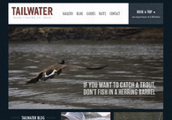 A great web design by Foundry 46, Dallas, TX: Website, Blog , Service , Other