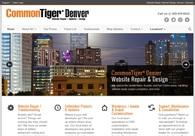 A great web design by CommonTiger* Denver, Denver, CO: