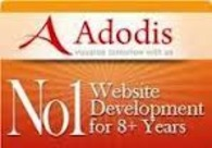 A great web design by Adodis Technologies Private Limited, Dallas, TX: