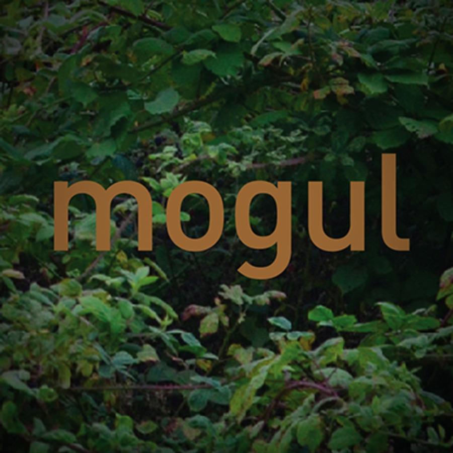 A great web design by mogul, Manchester, United Kingdom:
