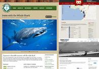 A great web design by Aldo Alfaro, Mexico, Mexico: