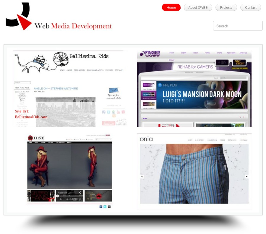 A great web design by QWeb Media Development, New York, NY: Website, Portfolio , Internet , Wordpress