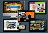 A great web design by TDS Design Group, Orange County, CA: