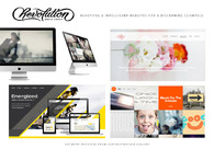 A great web design by Revolution Media Group, San Francisco, CA: Responsive Website, Portfolio , Wordpress