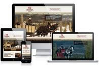 A great web design by Armgardt Design, Denver, CO: Responsive Website, Marketing Website , Entertainment , Wordpress