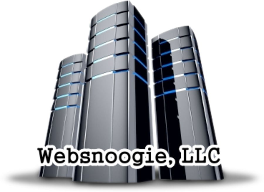 A great web design by Websnoogie, Chicago, IL: