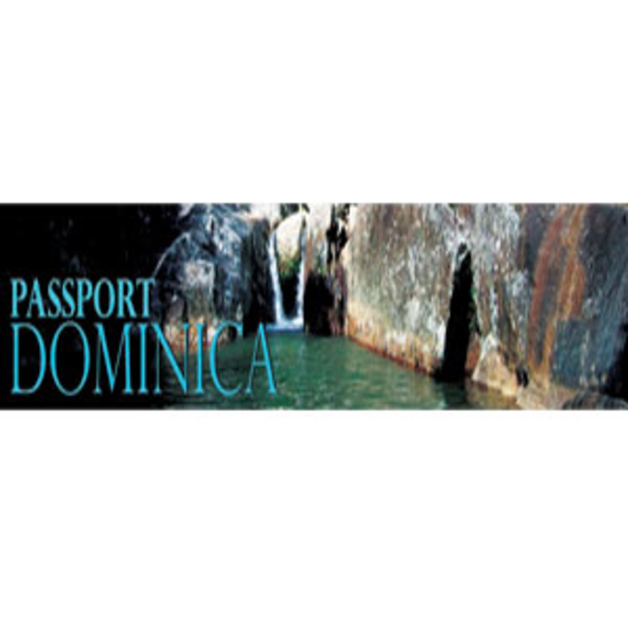 A great web design by PassportDominica, New York, NY: