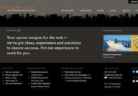 A great web design by Natural Logic, Nashville, TN: