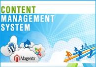 A great web design by WebNet Pakistan, Karachi, Pakistan: Responsive Website, Portfolio , Internet , Wordpress