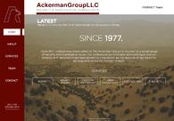 A great web design by IntelBoss, Los Angeles, CA: