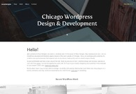 A great web design by NeurDesigns, Lombard, IL: Other, Marketing Website , Internet , Wordpress