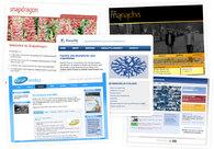A great web design by Paul Stone Design, London, United Kingdom: