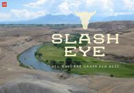 A great web design by sdg, Denver, CO: