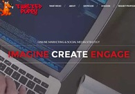 A great web design by Twisted Puppy, Los Angeles, CA: