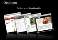 A great web design by Optimum Technology Solutions, Tallahassee, FL: