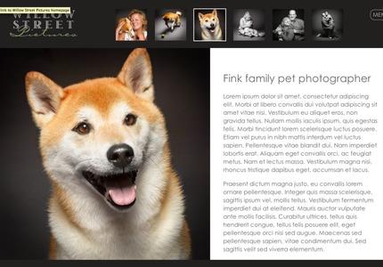 A great web design by WP BackOffice, Cherry Hill, NJ: Responsive Website, Portfolio , Film & Video , Wordpress