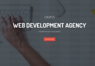 A great web design by Calipus Software Pvt Ltd, New Delhi, India: Responsive Website, Web Application , Technology , Wordpress