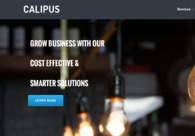 A great web design by Calipus Softawre Pvt Ltd, New Delhi, India: