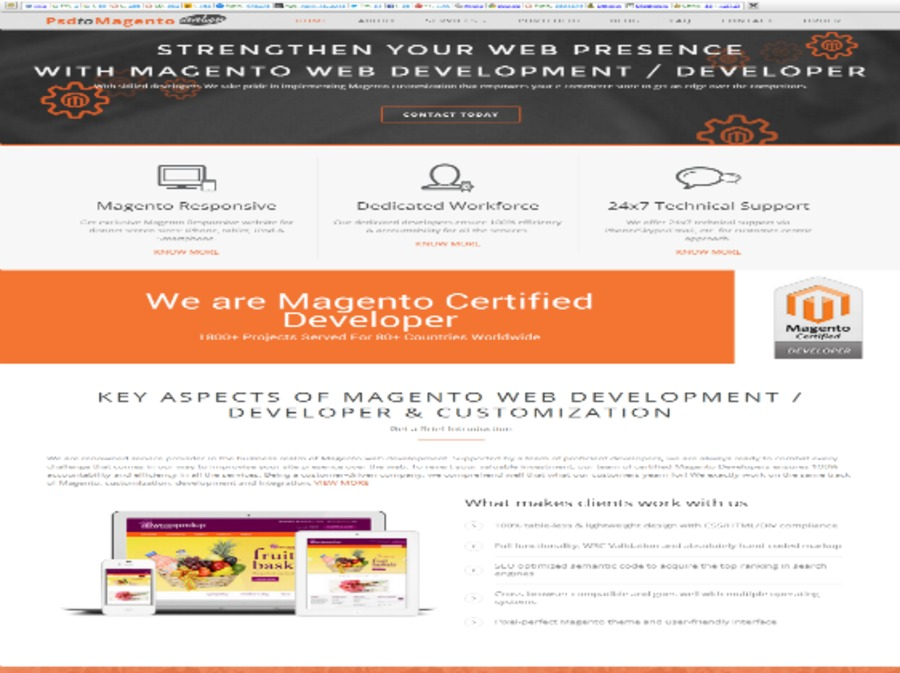 A great web design by PSDtoMagentoDeveloper, Delaware City, DE: