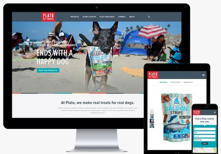 A great web design by Raygun, Los Angeles, CA: Responsive Website, Marketing Website , Consumer Products , Wordpress