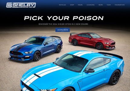 A great web design by Skip & West, New York, NY: Other, News , Other, Static HTML