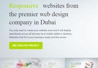 A great web design by Dubaimonsters, Dubai, United Arab Emirates: Responsive Website, E-Commerce , Software , Wordpress