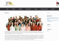 A great web design by B. R. Solutions, Delhi, India: