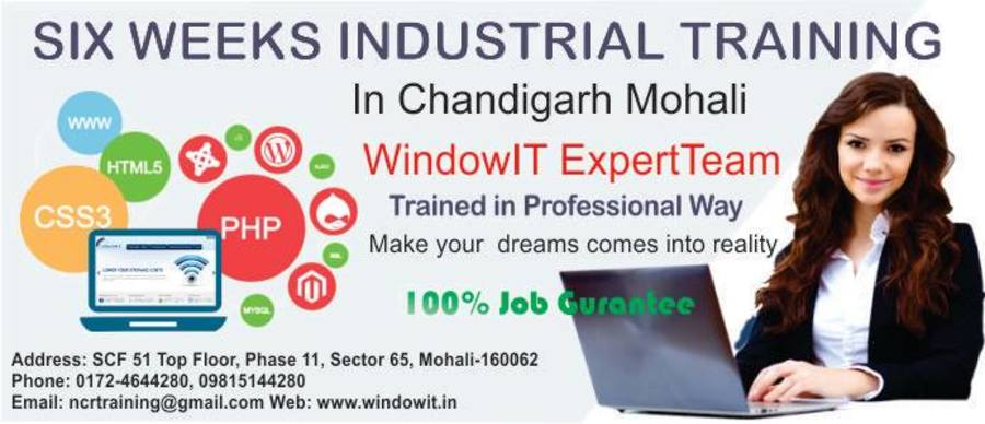 A great web design by Windowit Six Months 6 Weeks Industrial Training in Chandigarh, Chandigarh, India: