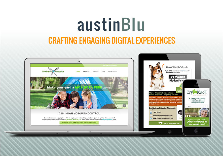 A great web design by Austin Blu, Cincinnati, OH: