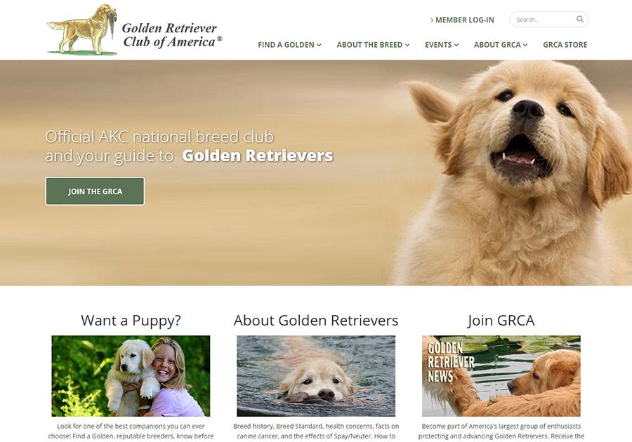 A great web design by DC Web Designers, Washington, DC: Responsive Website, Marketing Website , Other, Wordpress