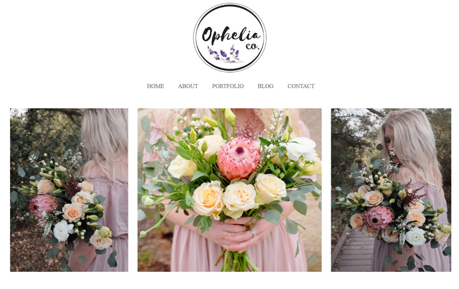 A great web design by Brooks Venters, San Diego, CA: