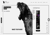 A great web design by Panther, Cape Town, South Africa:
