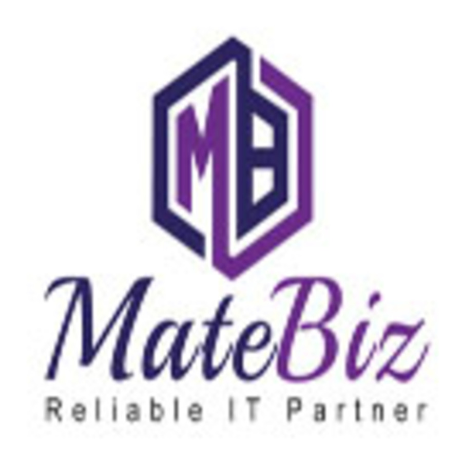 A great web design by Matebiz, Delhi, India: