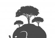 A great web design by Underground Elephant, San Diego, CA: