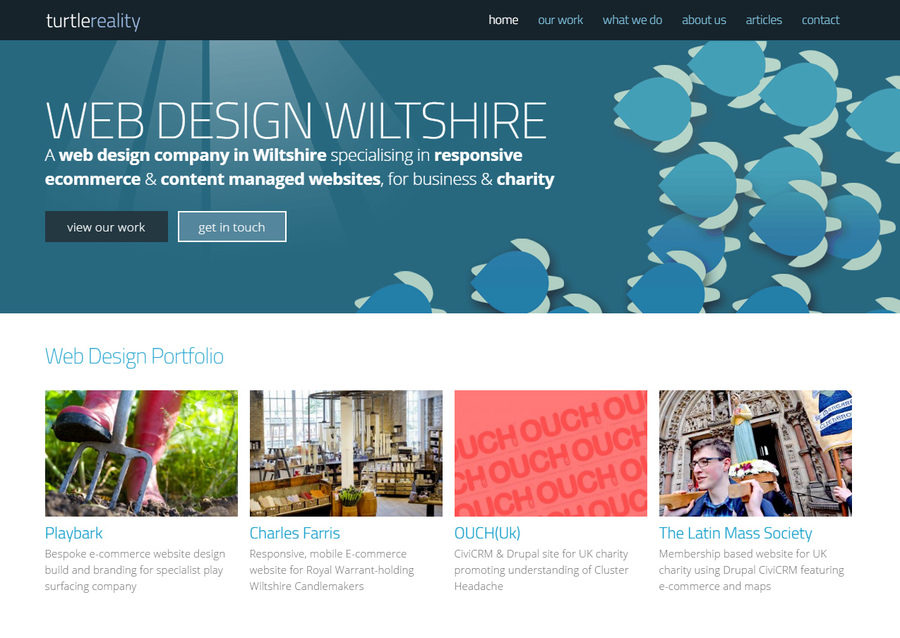 A great web design by turtlereality web design, Salisbury, United Kingdom: Responsive Website, Portfolio , Technology , Drupal