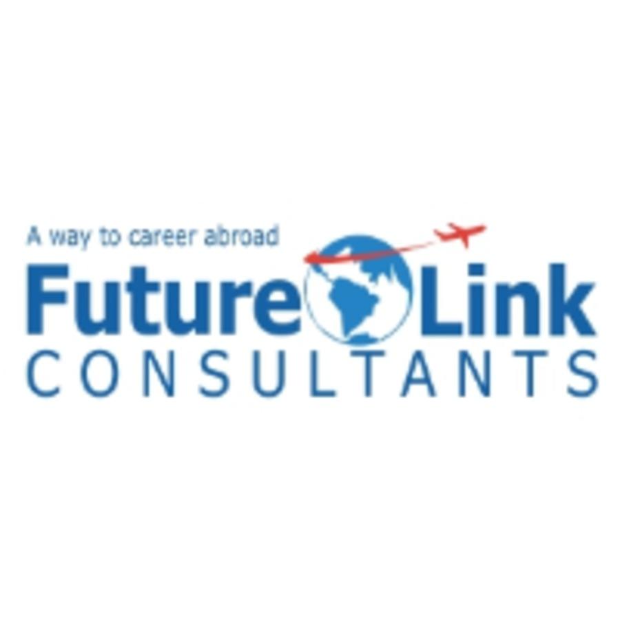 A great web design by Future Link Consultants, Vadodara, India: