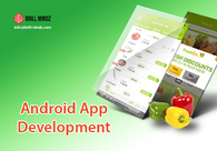 A great web design by Android App Development in Austin, Austin, TX: