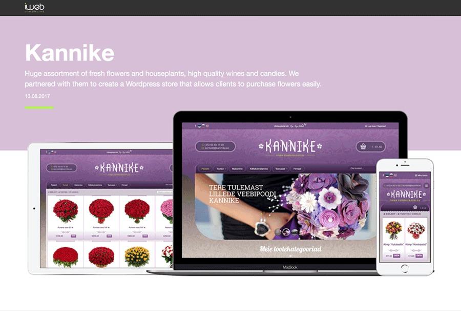 A great web design by iWeb.ee , E-Interactive, Tallinn, Estonia: