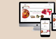 A great web design by WDP Technologies, Jaipur City, India: