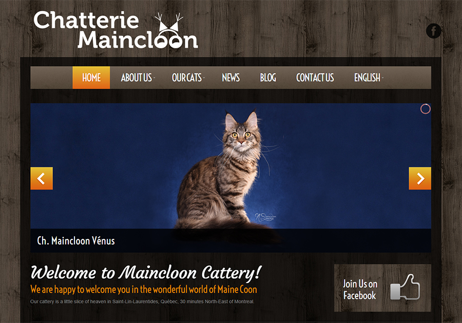 A great web design by Minerva Web Design and Marketing, Montreal, Canada: