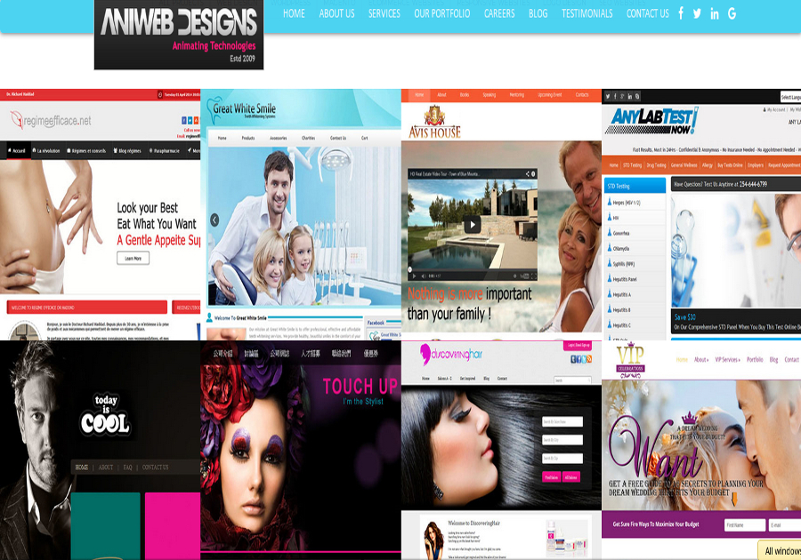 A great web design by Aniwebdesigns Pvt Ltd, Mohali, India: