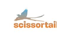 A great web design by Scissortail Creative, Dallas, TX: