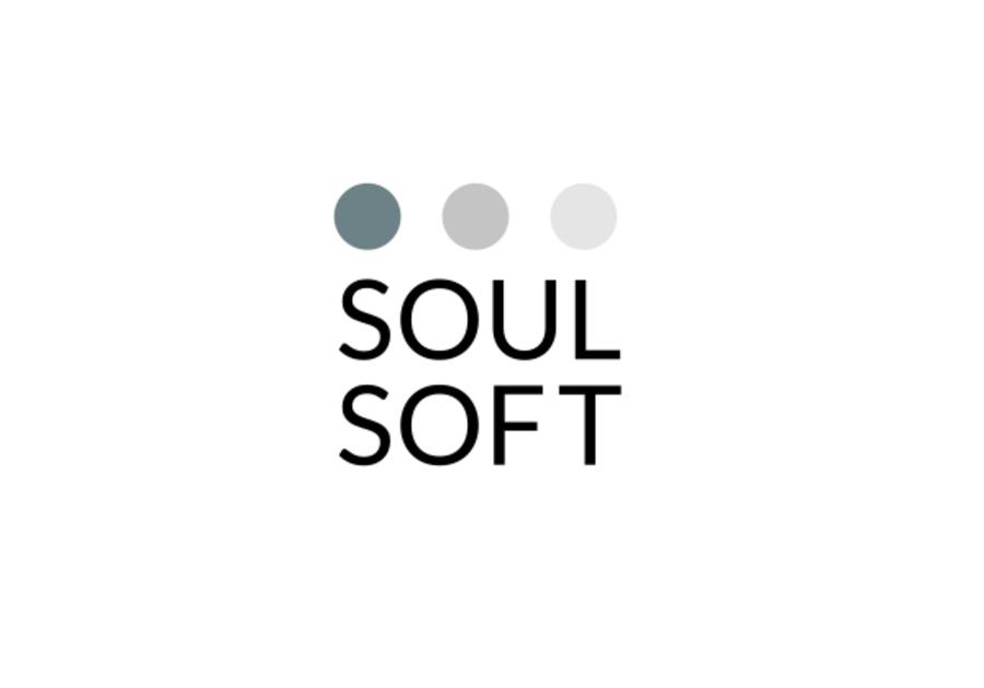 A great web design by Soul Soft, Lviv, Ukraine: