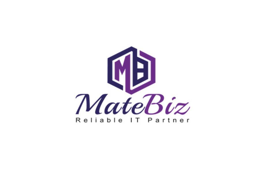 A great web design by Matebiz India, Delhi, India: