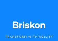 A great web design by Briskon Inc., Bengaluru, India:
