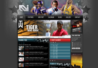 A great web design by TJ Mapes, Chicago, IL: