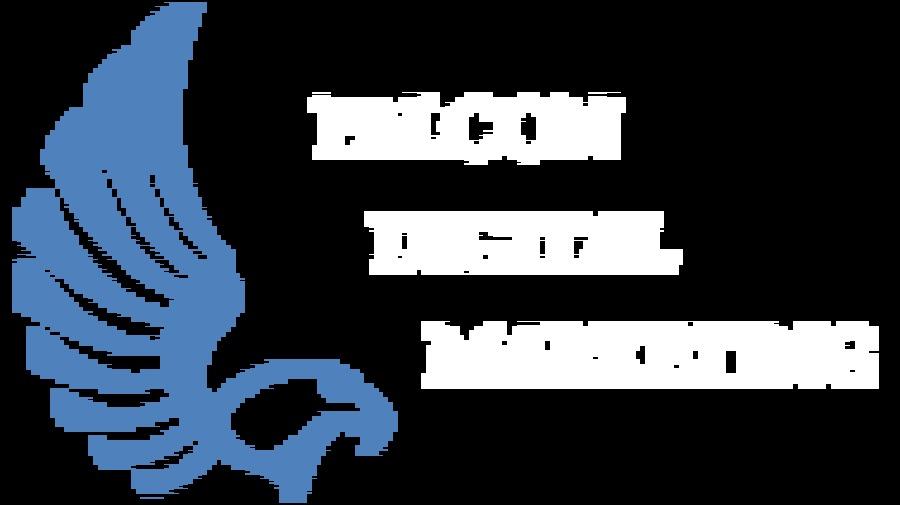 A great web design by Falcon Digital Marketing , Houston, TX: